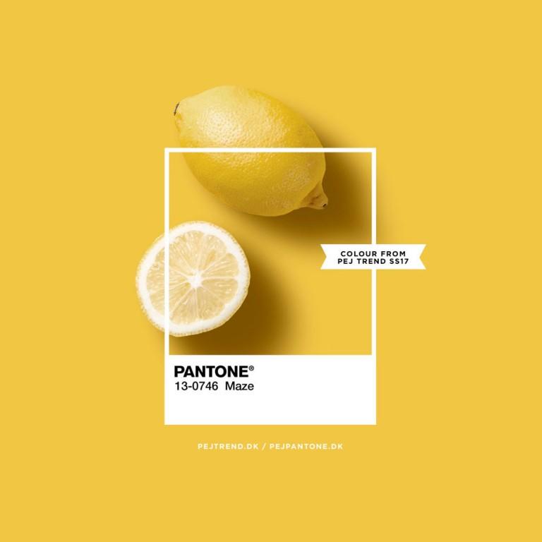 Pantone - maze - pejpantone.dk