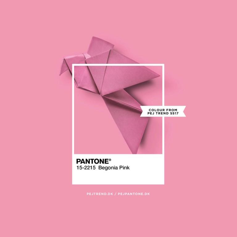 Pantone - begonia pink - pejpantone.dk