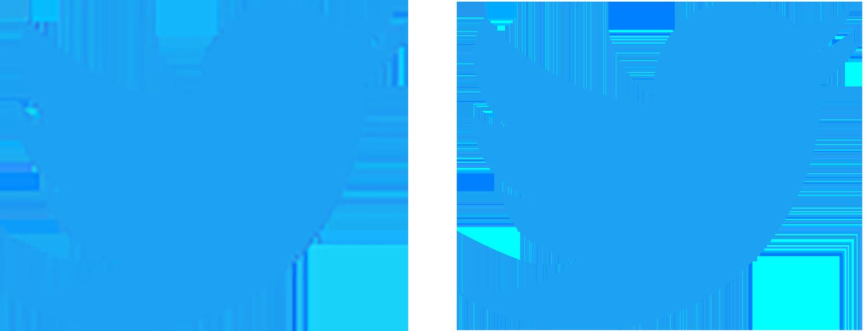 twitter raster vector